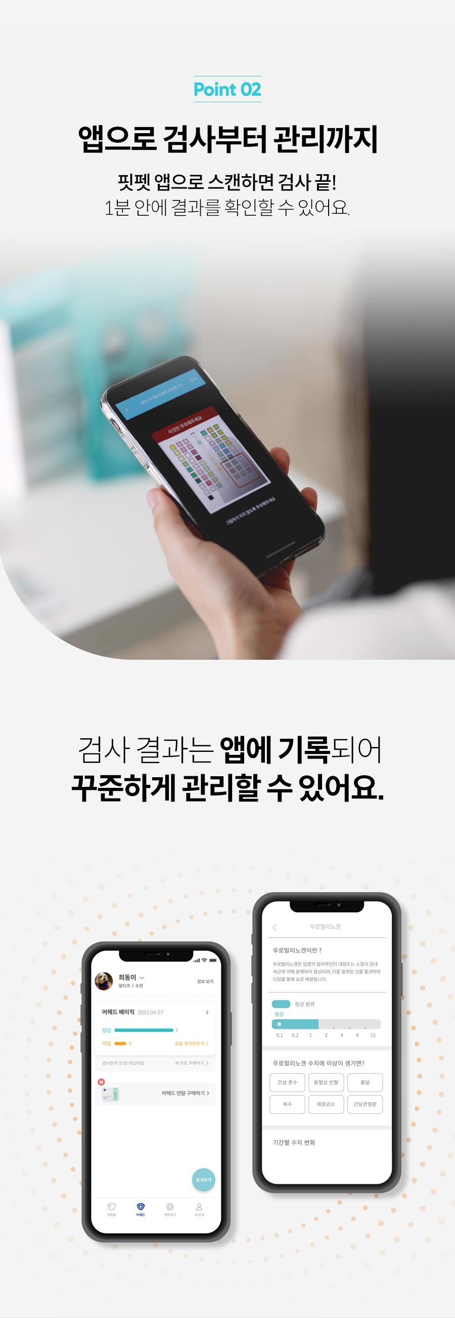 [리뉴얼이벤트] 어헤드 베이직 리뉴얼 출시-상품이미지-5