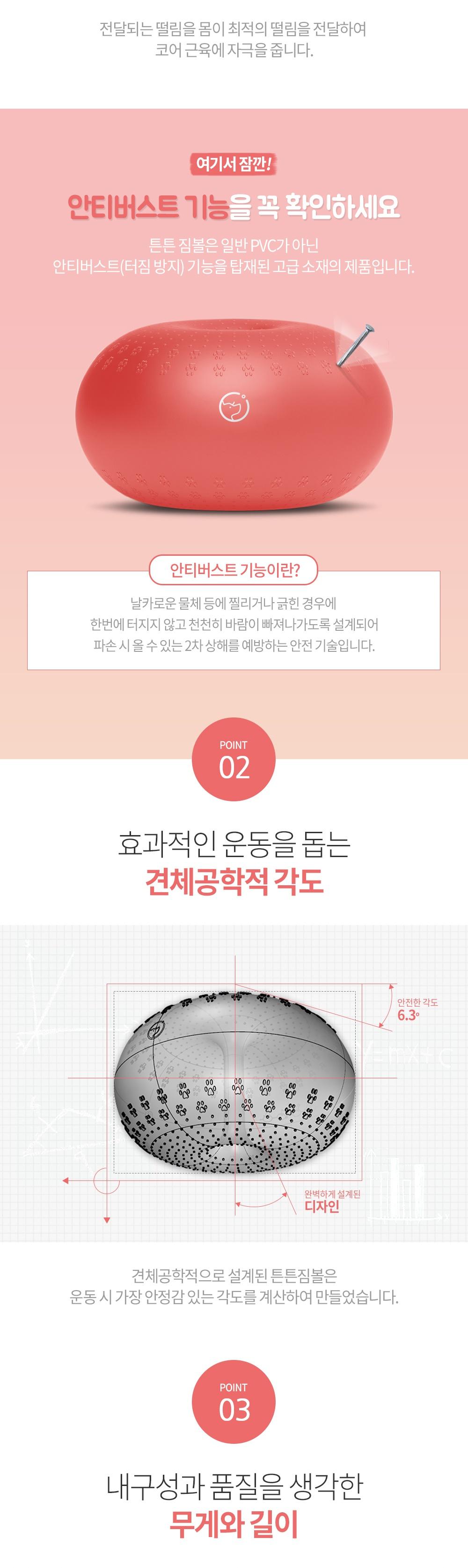반려견 운동기구 튼튼짐볼+홀더 (단품/세트)-상품이미지-14
