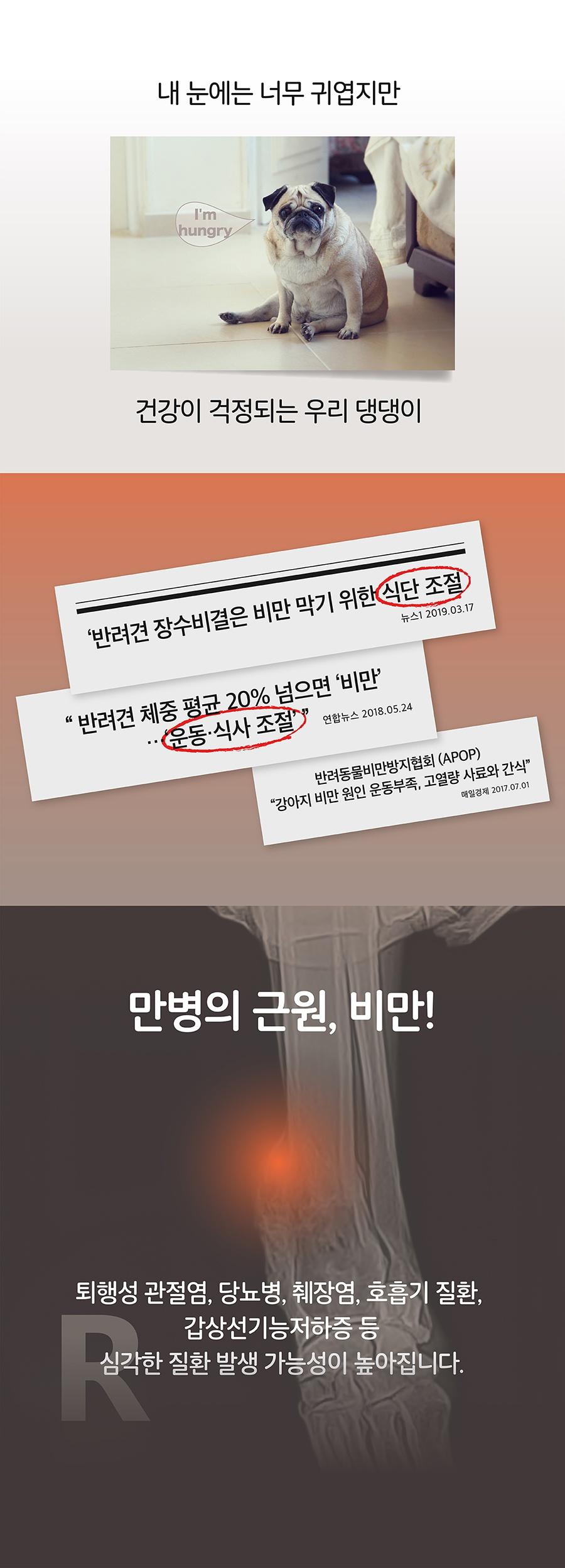it 잇쭈 프로 도그 체중관리 특대용량 (8개입*8개)-상품이미지-2